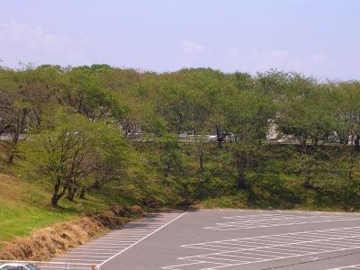 0812higashikasamatsu07.jpg